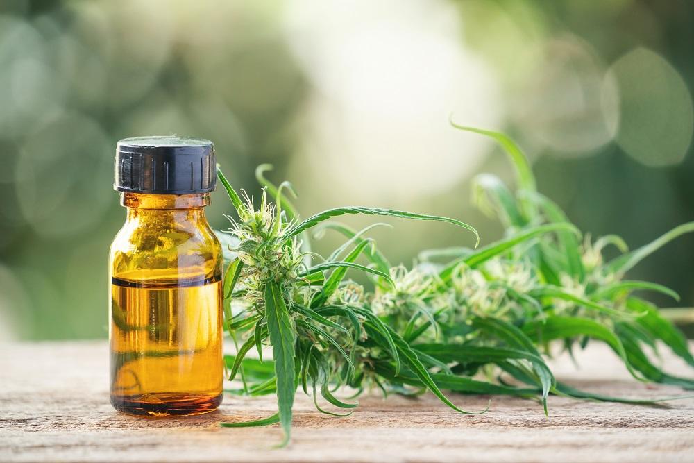 Dosage et fréquence de consommation fleurs CBD