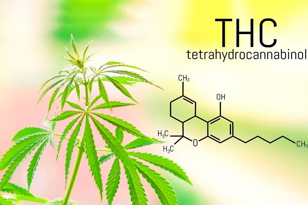 THC et CBD